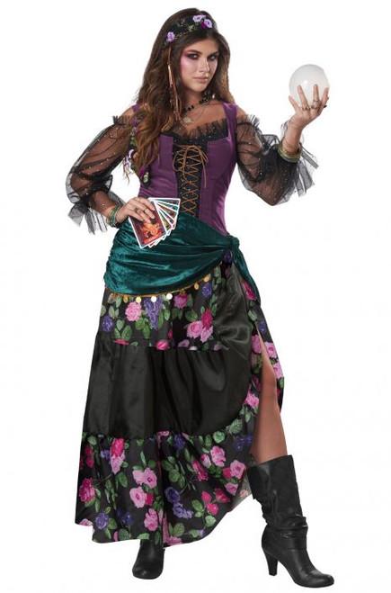 Mystical Charmer Ladies Costume