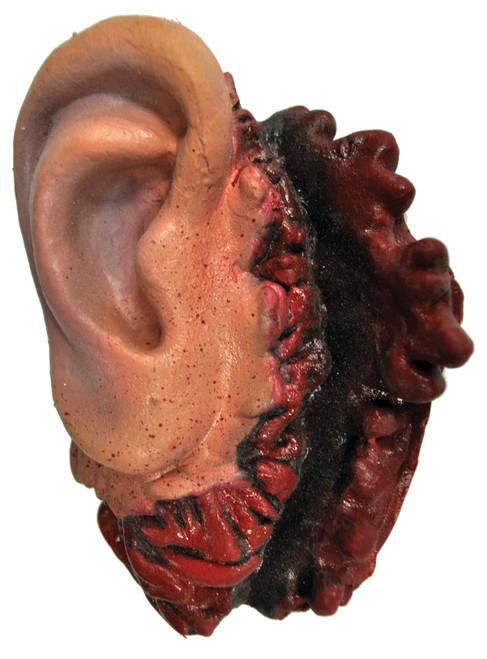 Latex Ear