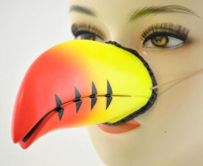 /toucan-parrot-nose/