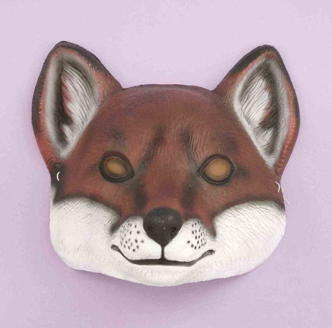 /plastic-fox-mask-frontal/