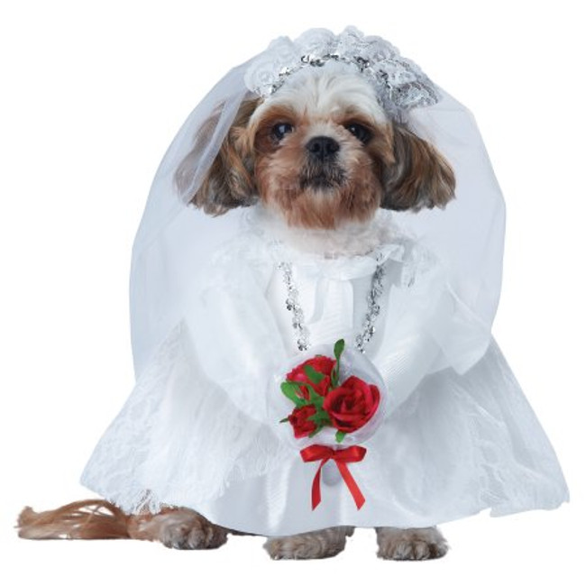 Puppy Love Bride dog costume