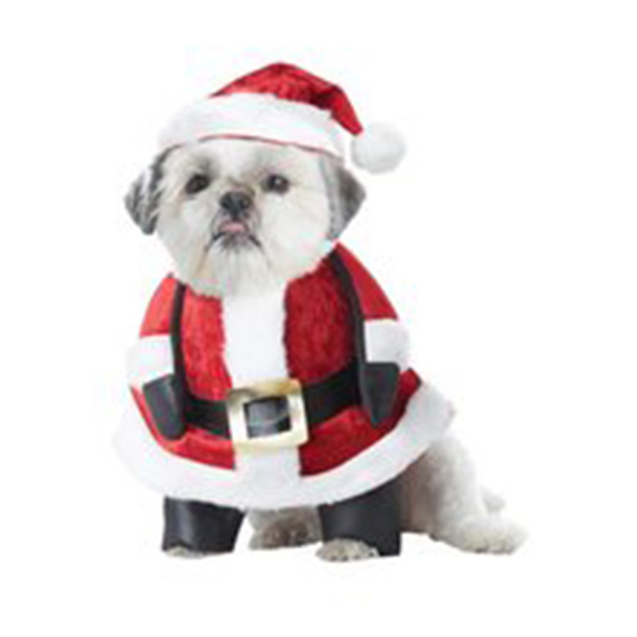 """Santa Paws Dog Costume All Items are IN STOCK and READY TO SHIP SAME DAY for orders placed by 1 pm EST! Next Day and Second Day orders are not available to ship to PO Boxes  Get your fluffy friend ready for the holiday season by purchasing this Santa Paws Pet Costume. Your pooch can put on his Kris Kringle ensemble so that you can take a picture for a Christmas card, attend a pet friendly party together, or so they can look super cute while celebrating with family at home. The costume is made to resemble Santa's coat and is attached with fake arms, as well as legs for your pups front feet. A black belt wraps around the faux velvet jacket which comes in red and features plush trim along the bottom and up the front. The included hat has the same design as the coat and is adorned with a pom pom at the end, completing your pet's costume.     Small (Fits up to 12 Length, 16-20 Chest, & 12-14 Neck), Medium (Fits up to 16 Length, 20-24 Chest, & 14-16 Neck), Large (Fits up to 20 Length, 24-28 Chest, & 16-20 Neck) Includes Hat and Costume with attached Arms and Legs Small (Fits up to 12"""" Length, 16""""-20"""" Chest, & 12""""-14"""" Neck), Medium (Fits up to 16"""" Length, 20-24"""" Chest, & 14""""-16"""" Neck), Large (Fits up to 20"""" Length, 24-28"""" Chest, & 16-20"""" Neck)"""