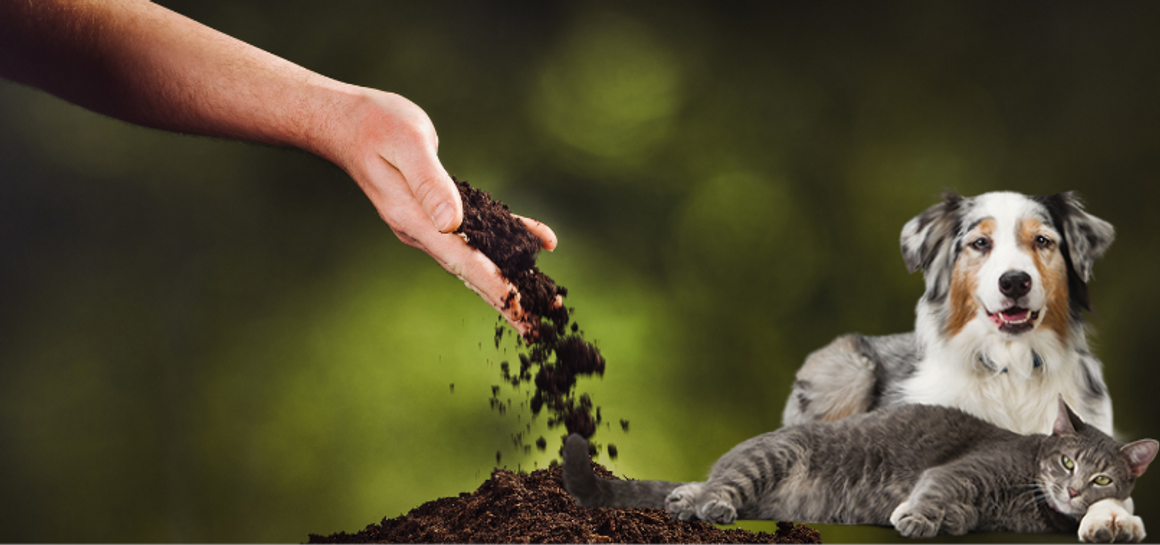 Fulvic & Humic Minerals For Pets