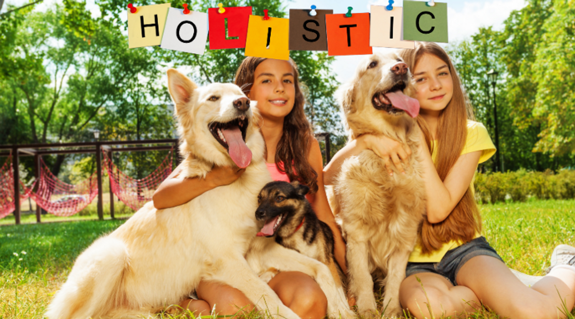 What is Holistic Pet Care?