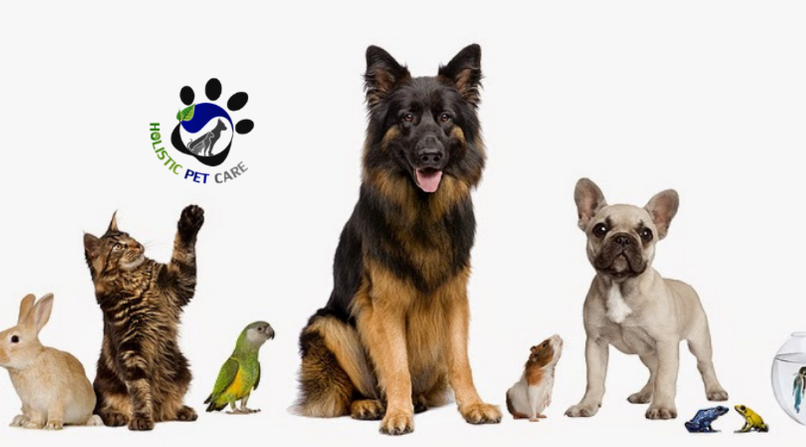 Welcome To Holistic Pet Care