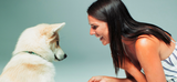 A Holistic Approach to Dog Raising and Training