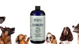 Benefits of Colloidal Silver for Dogs