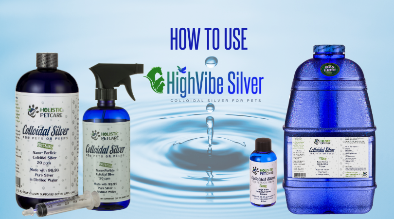 how-to-use-colloidal-silver-for-pets-1-.png