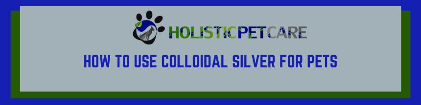 silversizes-1-.png