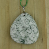 Bamboo Side 1 View - Pendant - Tree Agate on Silver Plate (1544)