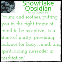 meaning-of-snowflake-obsidian.png