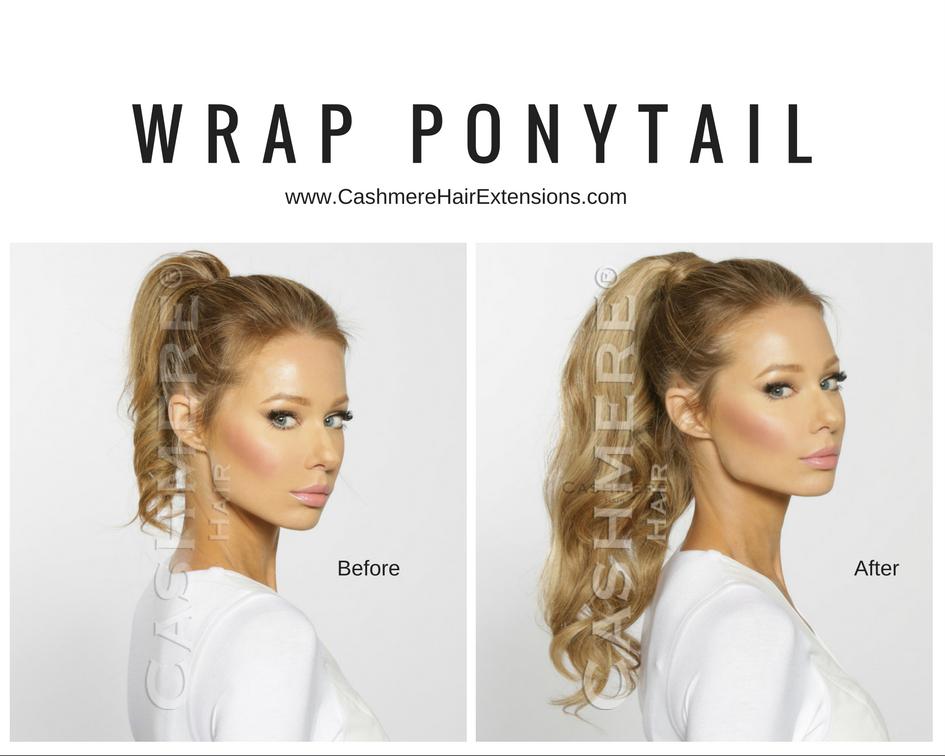ponytail-logo.jpg