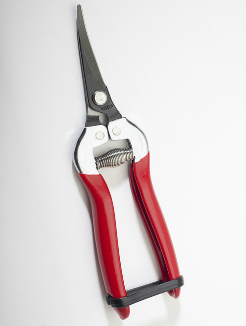 "Grape Clippers - 7"" Carbon Steel w/ Curved Blade"