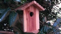 Birdhouse Hidden Camera w/ DVR & Battery