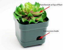 Planter Hidden Camera w/ DVR & Battery