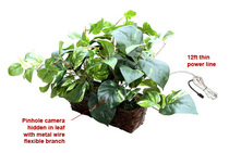 Fake Plant Hidden Camera w/ DVR, WiFi Remote Viewing & 20 Foot Night Vision