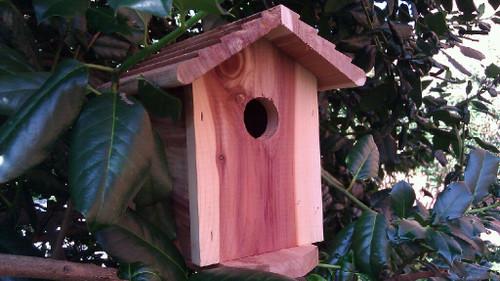 Birdhouse Hidden Camera w/ 4G Cellular Remote Viewing