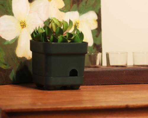 Planter Hidden Camera w/ DVR & Battery