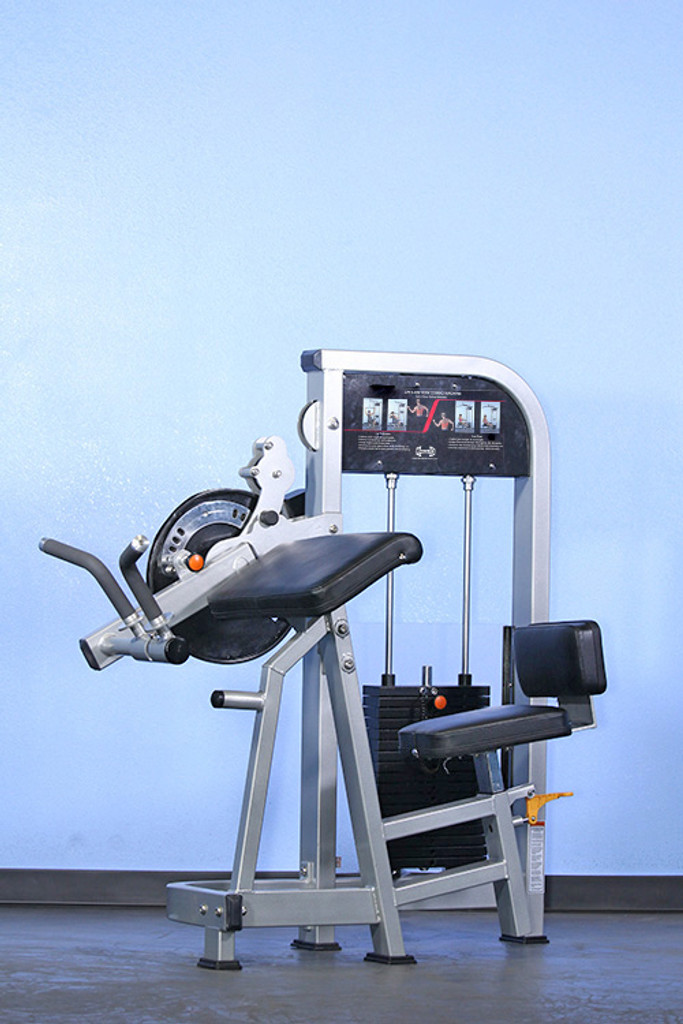 Muscle D Biceps/Triceps Weight Machine