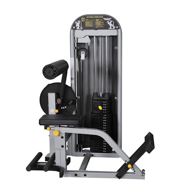 Inflight Fitness Commercial Ab/Back Machine