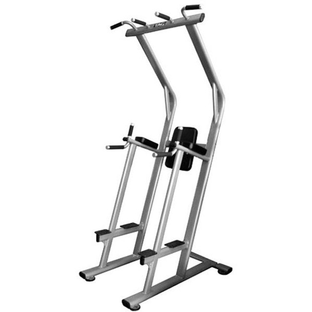 TAG Commercial VKR/Pull Up/Dip Station