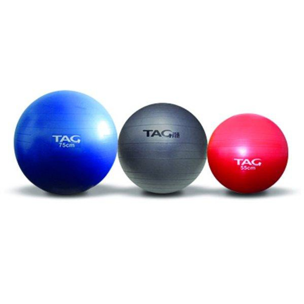 TAG Fitness (#ACC) Exercise Stability Balls