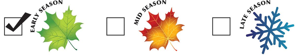 season-early.jpg