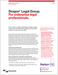 Dragon Legal Group brochure icon
