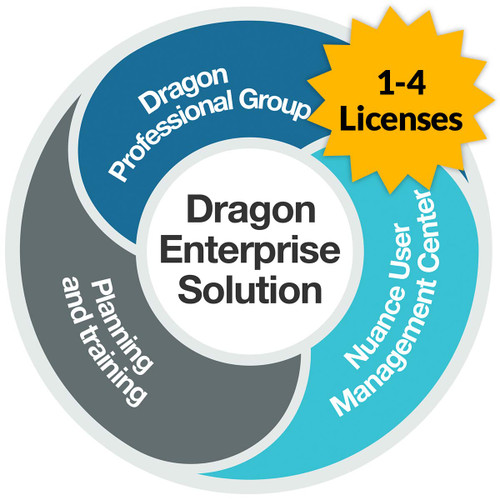 Dragon Professional 15 Group - Level AA