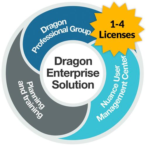 Dragon Professional 15 Group - Level AA