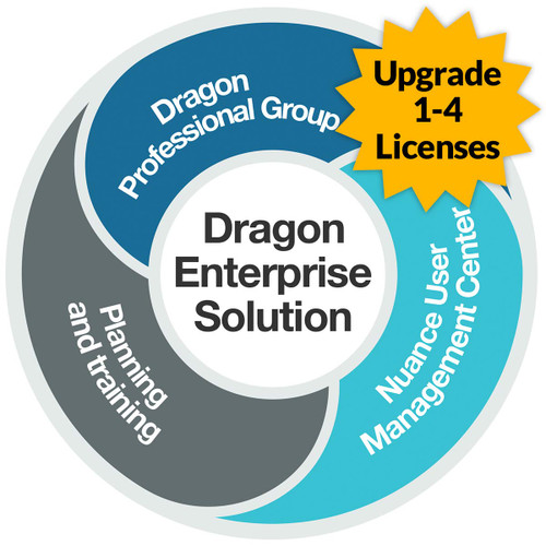 Dragon Professional 15 Group - Level AA - Upgrade from Professional 13 and up