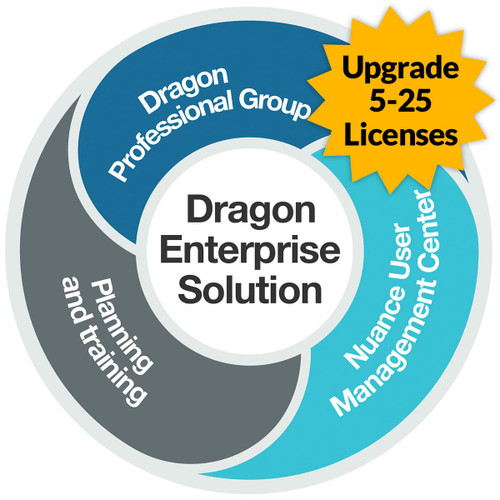 Dragon Professional 15 Group - Level A - Upgrade from Professional 13 and up