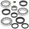 All Balls Differential Bearing and Seal Kit for Polaris