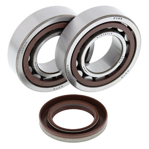 All Balls Crank Bearing and Seal Kit for KTM 24-1106