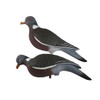 Enforcer Pigeon Decoys 10 pack