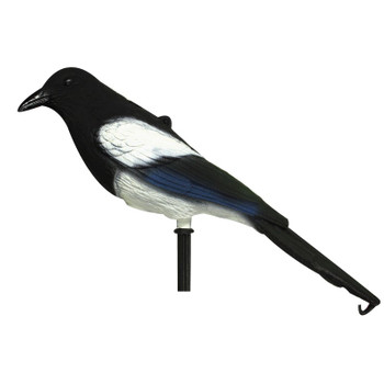 Magpie Decoy