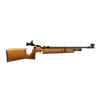 Air Arms S200 Target