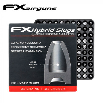 FX Hybrid Slug .22 22grains  x100