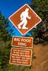 Bigfoot - Magnet