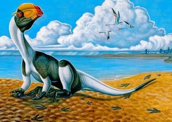 Dilophosaurus 2 - Postcard