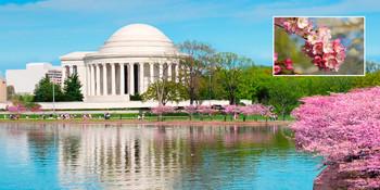 Jefferson Memorial Long Card