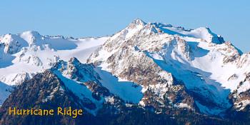 Hurricane Ridge, Washington Long Card