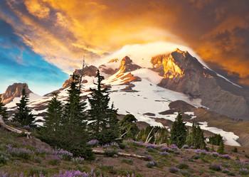 Mount Hood, OR - Postcard