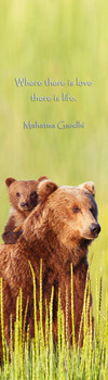 Bear Brown and cub Bookmark
