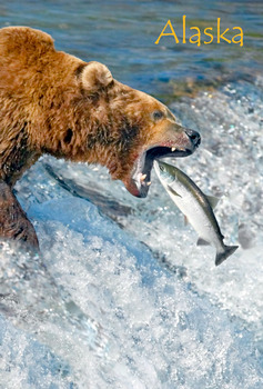 Grizzly fishing Magnet with Alaska name drop