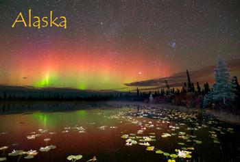 Aurora 02 - Magnet Alaska