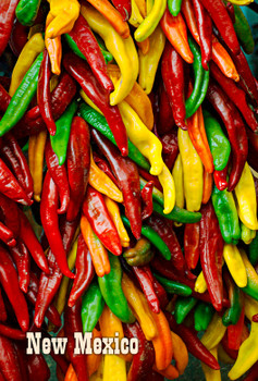 Chilli Peppers Magnet New Mexico