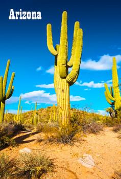 Saguaro Cactus Magnet Arizona
