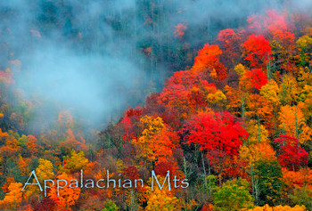 Appalachian Mountains - Magnet