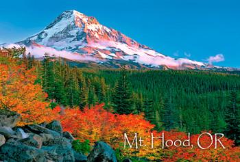 Mount Hood - Magnet
